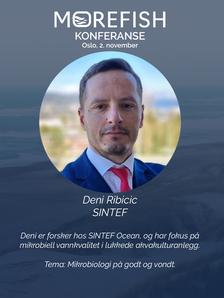 foreleser_deniribicic.png