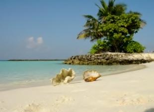Lingue di sabbia