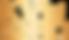 Gold KOS logo (1)_edited.png