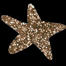 logo  estrella _wisacorrea.png