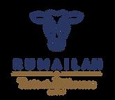 New Rumailah Logo.png