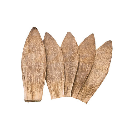 Dried Bamboo Leaves 130Pcs