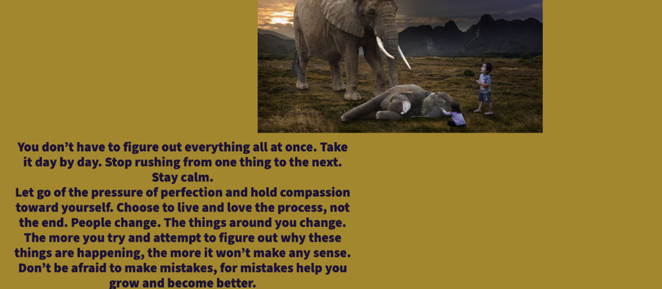 Holding Compassion