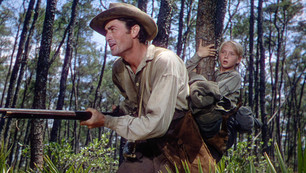 """Great cast and story drive """"The Yearling"""" – Warner Archive Collection"""