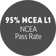 AvCol_BRAG_NCEA_L1.png