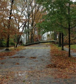 Super Storm Sandy, 2012