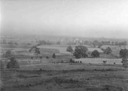 Agricultural Ridgewood