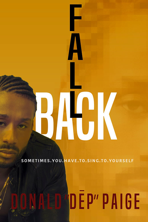 Book: Fallback To Step Up By Donald DeP Paige