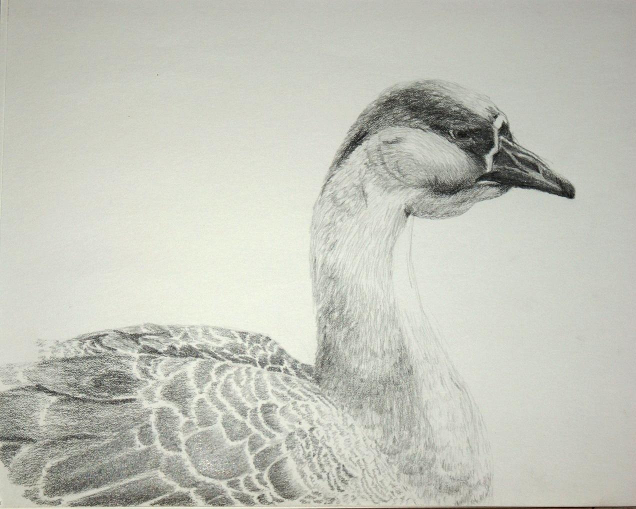 goose pencil