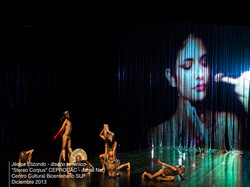 lighting design Stereo Corpus 2013 / CEPRODAC