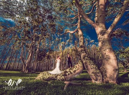 Stunning Wedding Images With Kaua'i Wedding Photographer Ashley Valera
