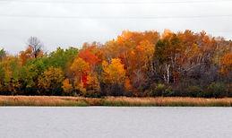 Fall color views