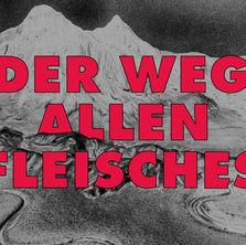 Grafik_DerWegAllenFleisches_web.jpg