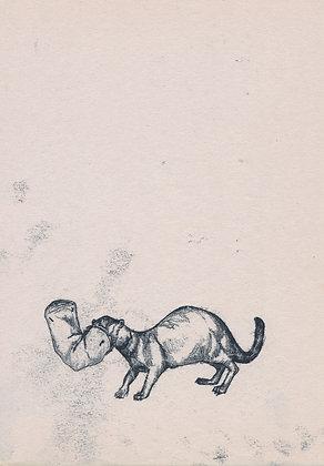 Plastic Tears Series (Mongoose), 24cm x 30cm
