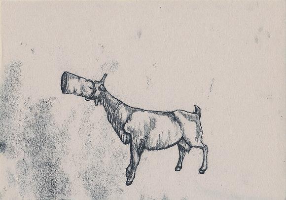 Plastic Tears Series (Goat), 24cm x 30cm