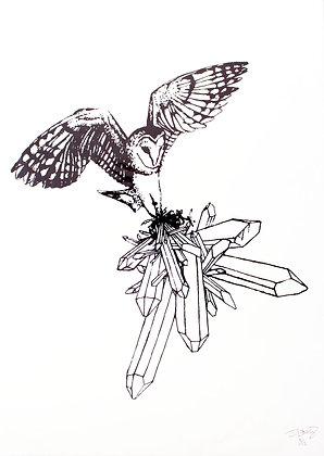 Owl in Flight, A3, 2014