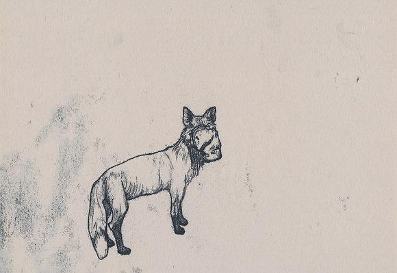 Plastic Tears Series (Fox), 24cm x 30cm