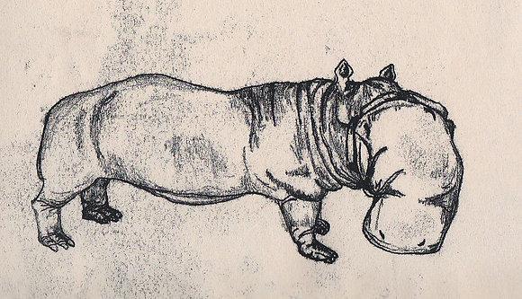 Plastic Tears Series (Hippopotamus), 24cm x 30cm