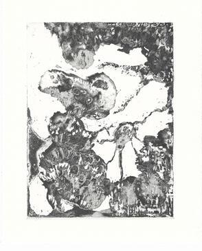Peacock_etching on 300gsm Hahnemuhle pri