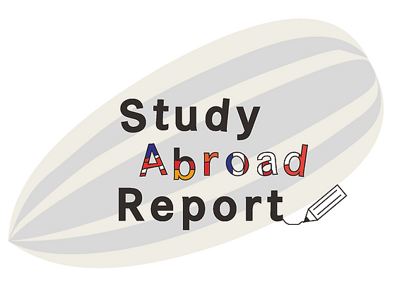 study abroad report logo.png