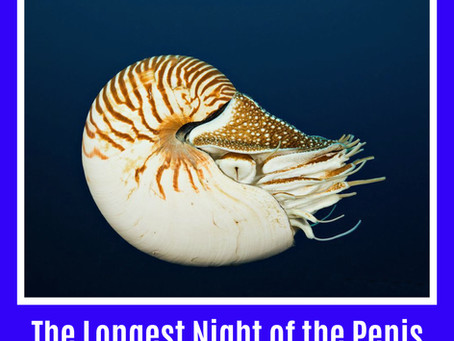 The Longest Night of the Penis
