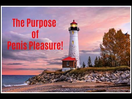 The Purpose of Penis Pleasure!