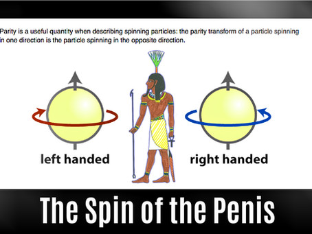 The Spin of the Penis