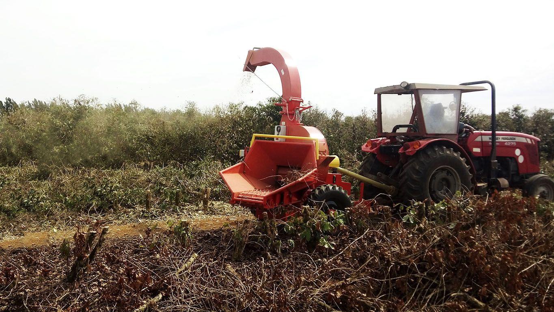 chipeadora-que-se-utiliza-en-la-plantaci