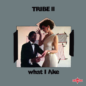 Tribe 2 - What I Like.jpg
