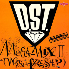 D.ST. - Megamix II Why Is It Fresh.jpg