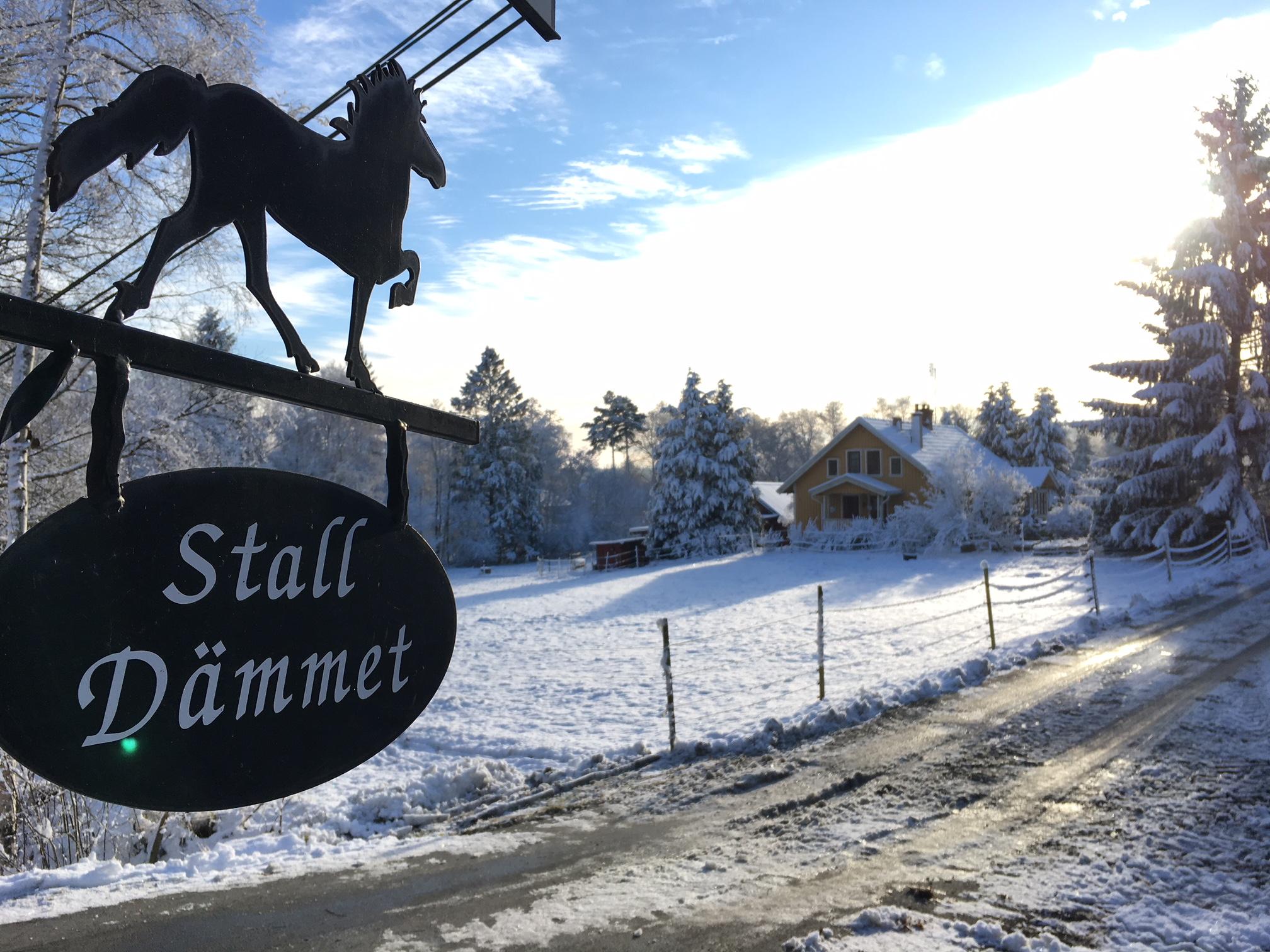 Vinter på Stall Dämmet
