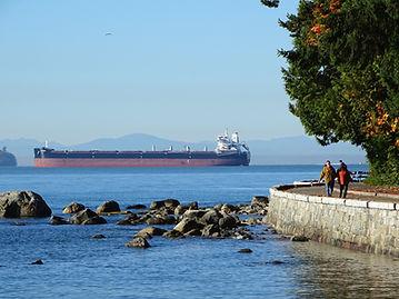 Autumn_Scene_in_Stanley_Park_-_Vancouver