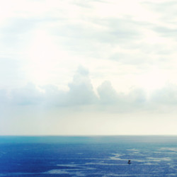 Hawaiian Dreams