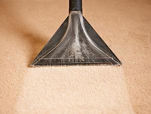 cjs-carpet-care-reno-professional-carpet