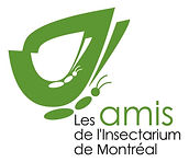logo_amis_insect_vert_foret_web.jpg