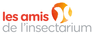 Logo-officiel-Amis_Insect_edited.png
