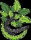 tca-logo-icon.png