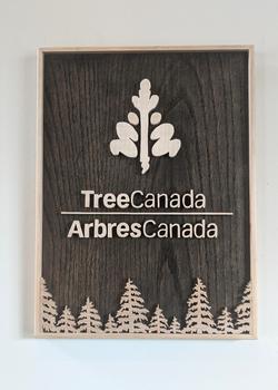 Tree Canada Logo in Custom Forest Frame