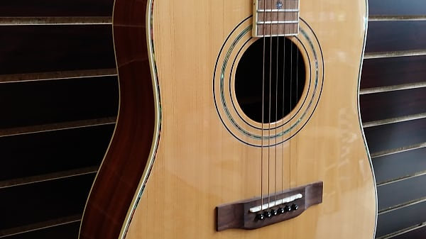 Fitzpatrick All Solid Wood Dreadnought Style Guitar