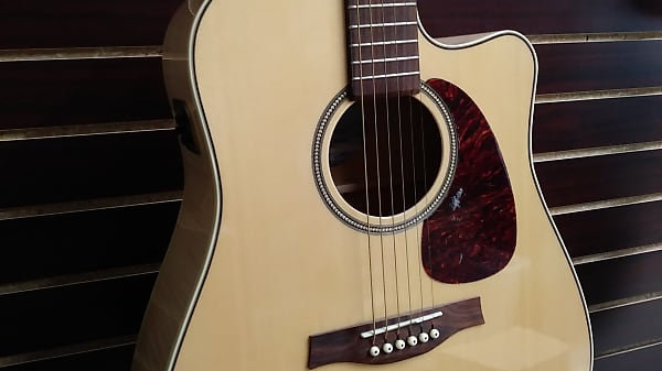 Seagull Performer CW Flamed Maple QIT