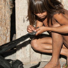 Bekwyikyti Kayapo removes a thorn from the hand of her spider monkey