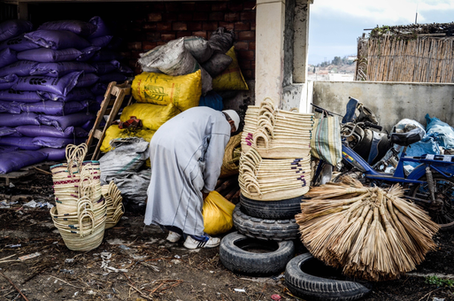 Livelihoods and Nature by Faissal Ammi, Morocco