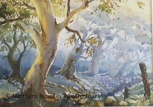 Watercolour painting by Jenny Gilchrist Northern Beaches Watercolour
