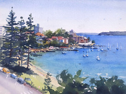 Manly Cove from East Esplanade