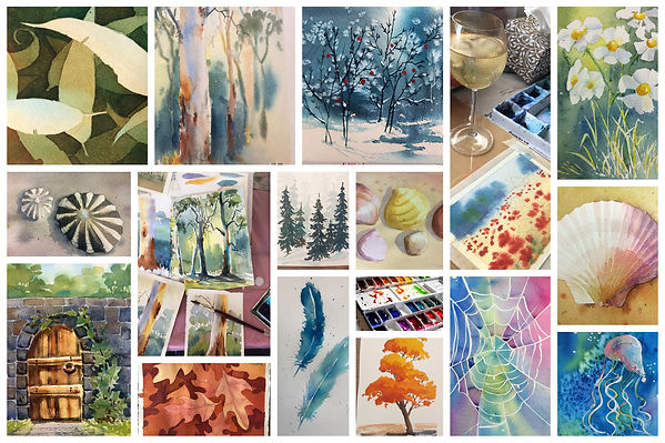 Beginners art lessons for adults in Sydney - watercolour paintings