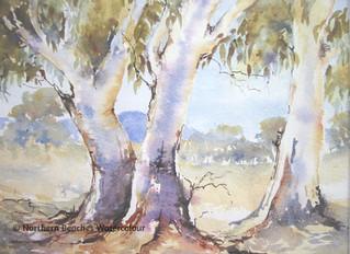 Watercolour Gum Trees - essence of Australia