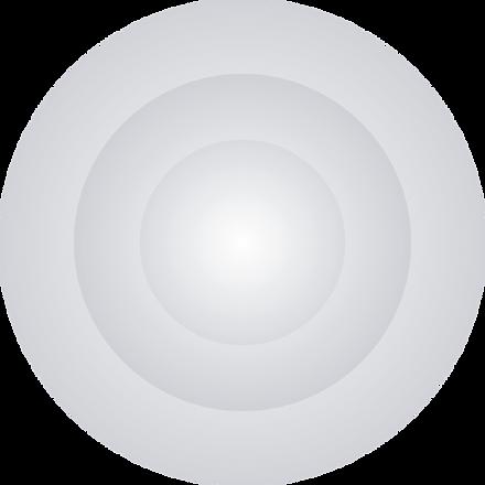 circles 2.png