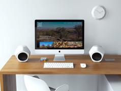 SS Champion Website Design + SEO