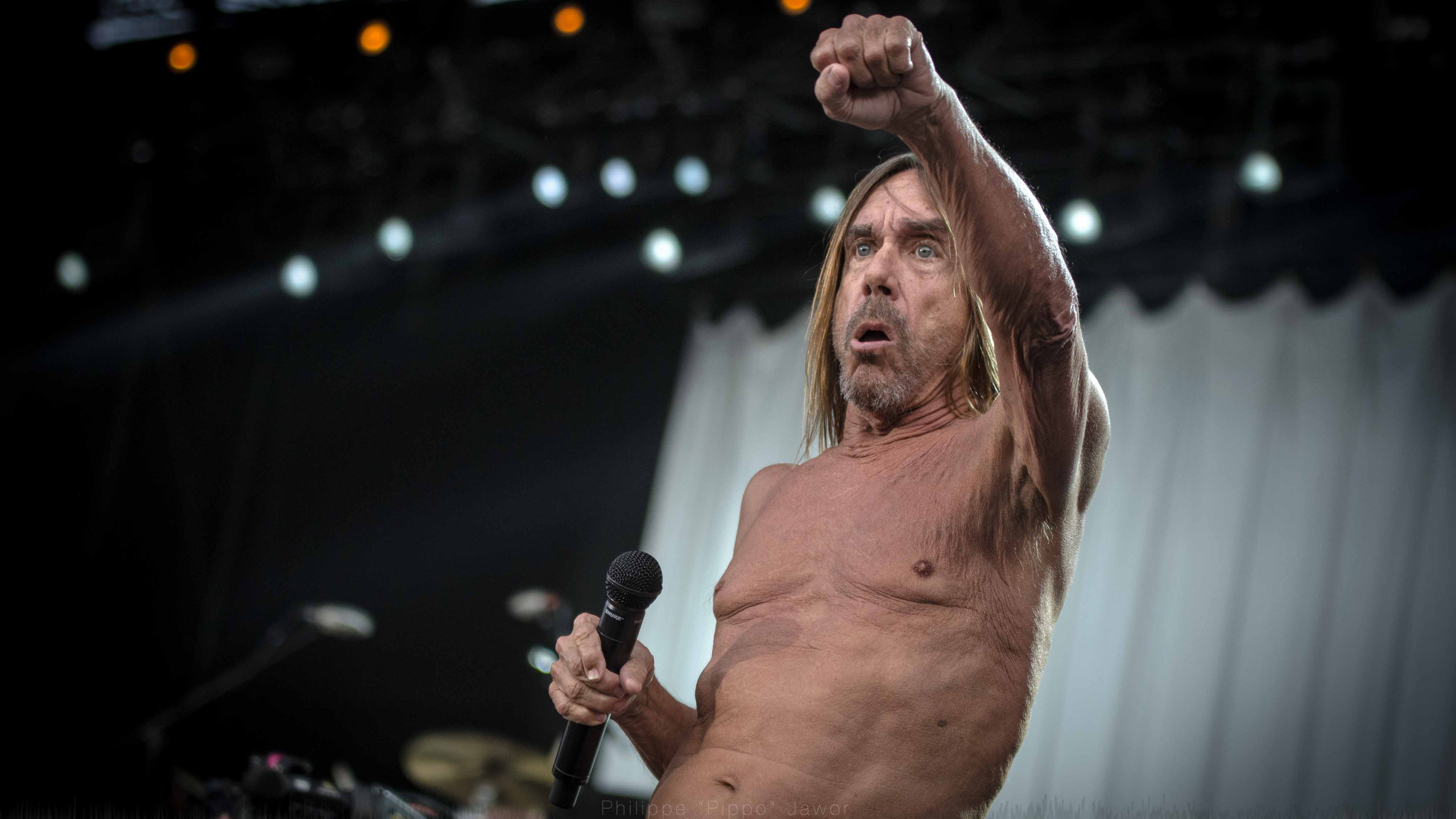 The American rock artist Iggy Pop, at Rock en Seine festival, August 2016.