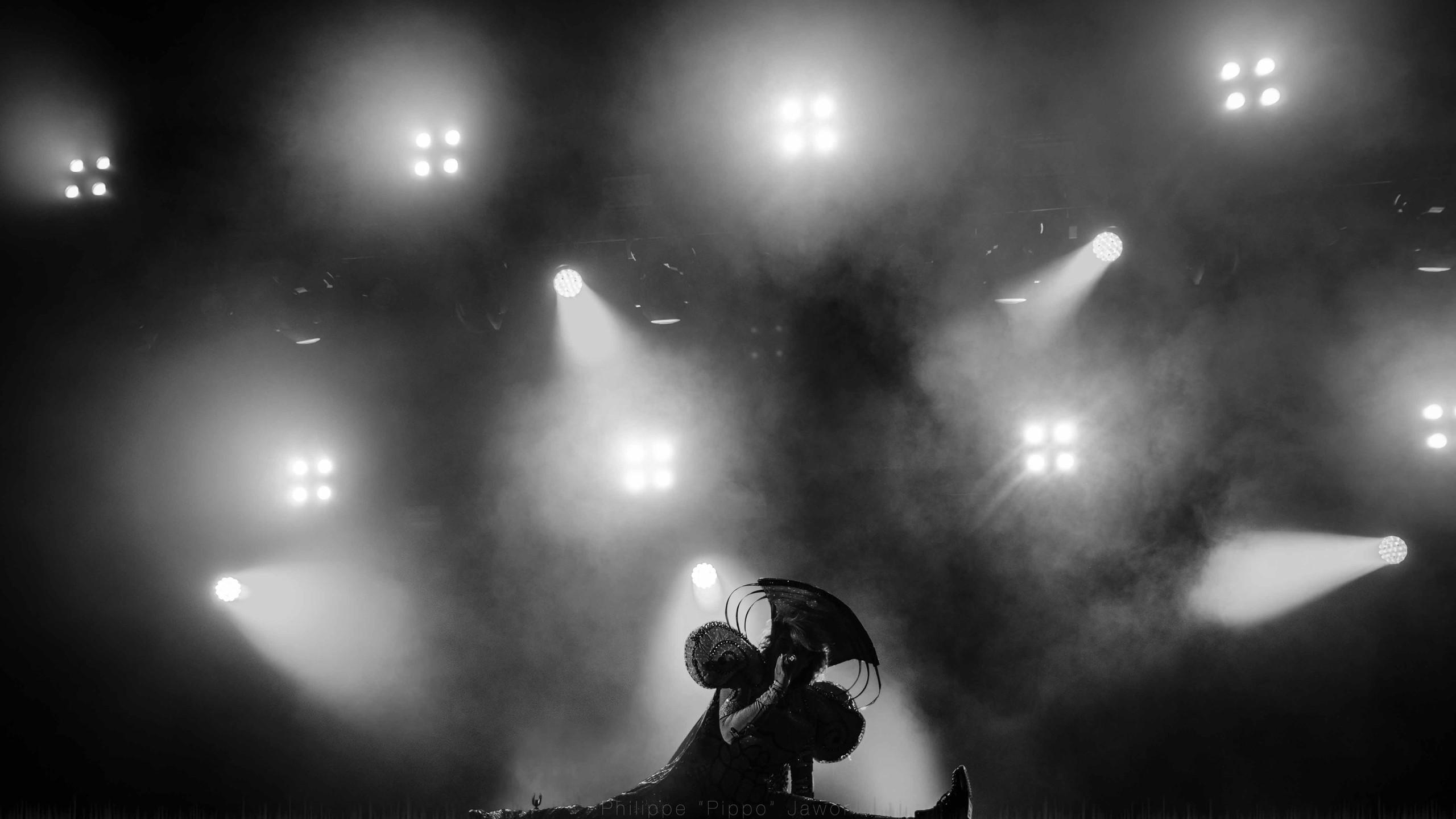 "The Canadian pop artist Merrill Beth ""Peaches"" Nisker, at Rock en Seine festival, August 2016."
